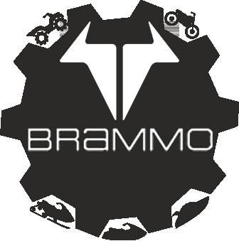 Мотоциклы Brammo