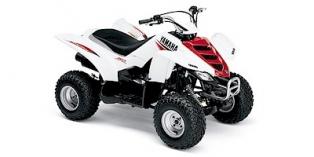 Yamaha Raptor 50 2004