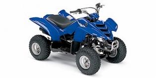 Yamaha Raptor 50 2005
