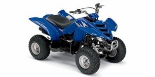 Yamaha Raptor 50 2006