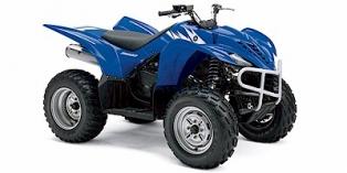 Yamaha Wolverine 350 2006