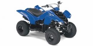 Yamaha Raptor 50 2008