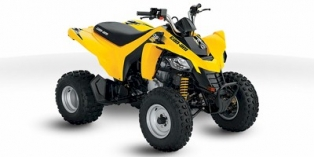 Can-Am DS 250 2010