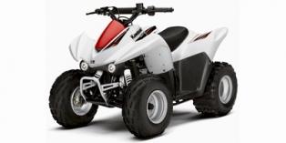 Kawasaki KFX90 2010