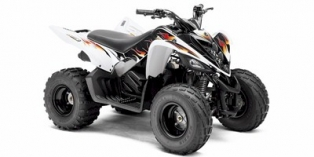 Yamaha Raptor 90 2010