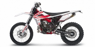GAS GAS XC250 2013