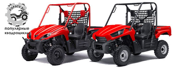 На этой фотографии хорошо видно развитие дизайна Kawasaki Teryx. Слева – модель 2009 года с более плавными и округлыми линиями. Справа – Teryx 2010 с более угловатым кузовом.