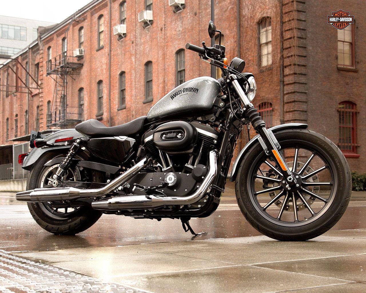 Harley Davidson iron 883 sportster | VK