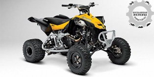 Can-Am DS 450 X mx 2014