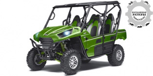 Kawasaki Teryx4 LE 2014