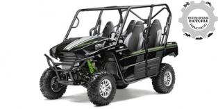 Kawasaki Teryx4 2015