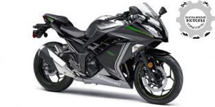 Kawasaki Ninja 300 SE 2015