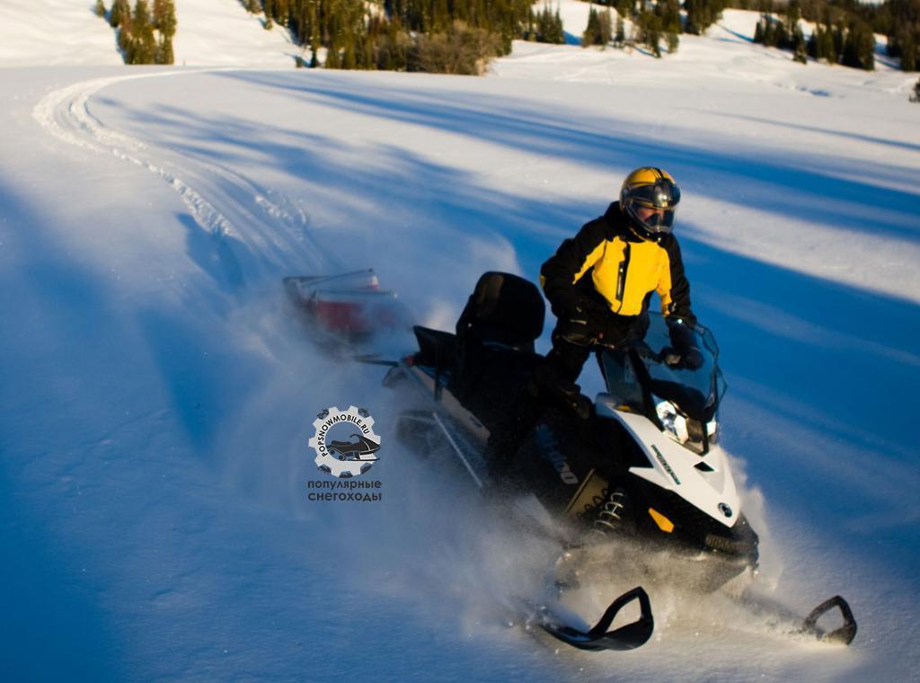 Утилитарная модель Expedition от Ski-Doo оснащается несколькими двигателями Rotax, в том числе 600-кубовым ACE и 2-тактными 550-кубовыми моторами с воздушным охлаждением.